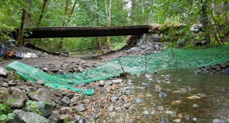 Pleasant-Creek-Bridge-01.jpg